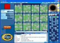 Online bingo room screen image